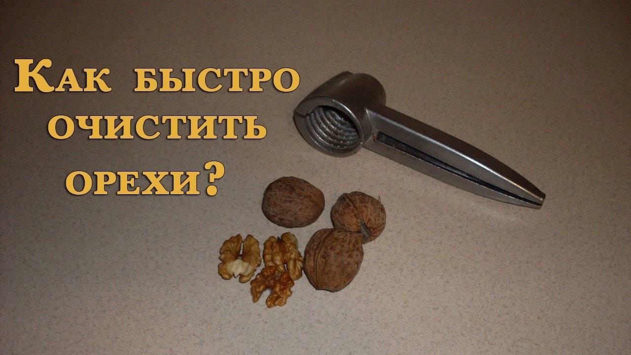 Как чистить грецкие орехи самим быстро и аккуратно