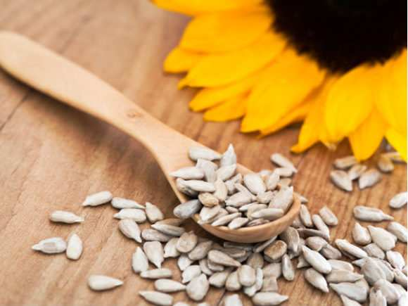 Можно ли при грудном вскармливании семечки кушать?
