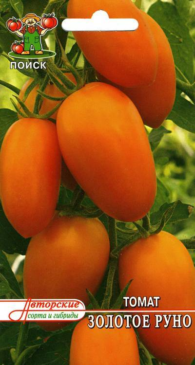 Томат «золотое руно»: описание сорта, характеристики, особенности выращивания, отзывы