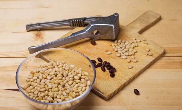 Применение скорлупы кедрового ореха в народной медицине и других сферах