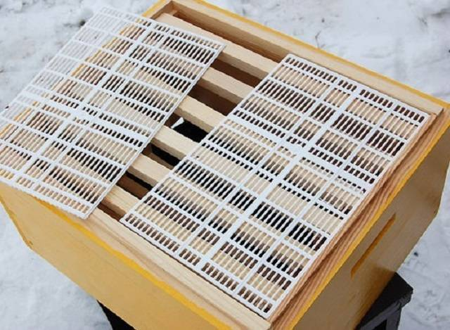 Леток для пчел – важная деталь каждого улья