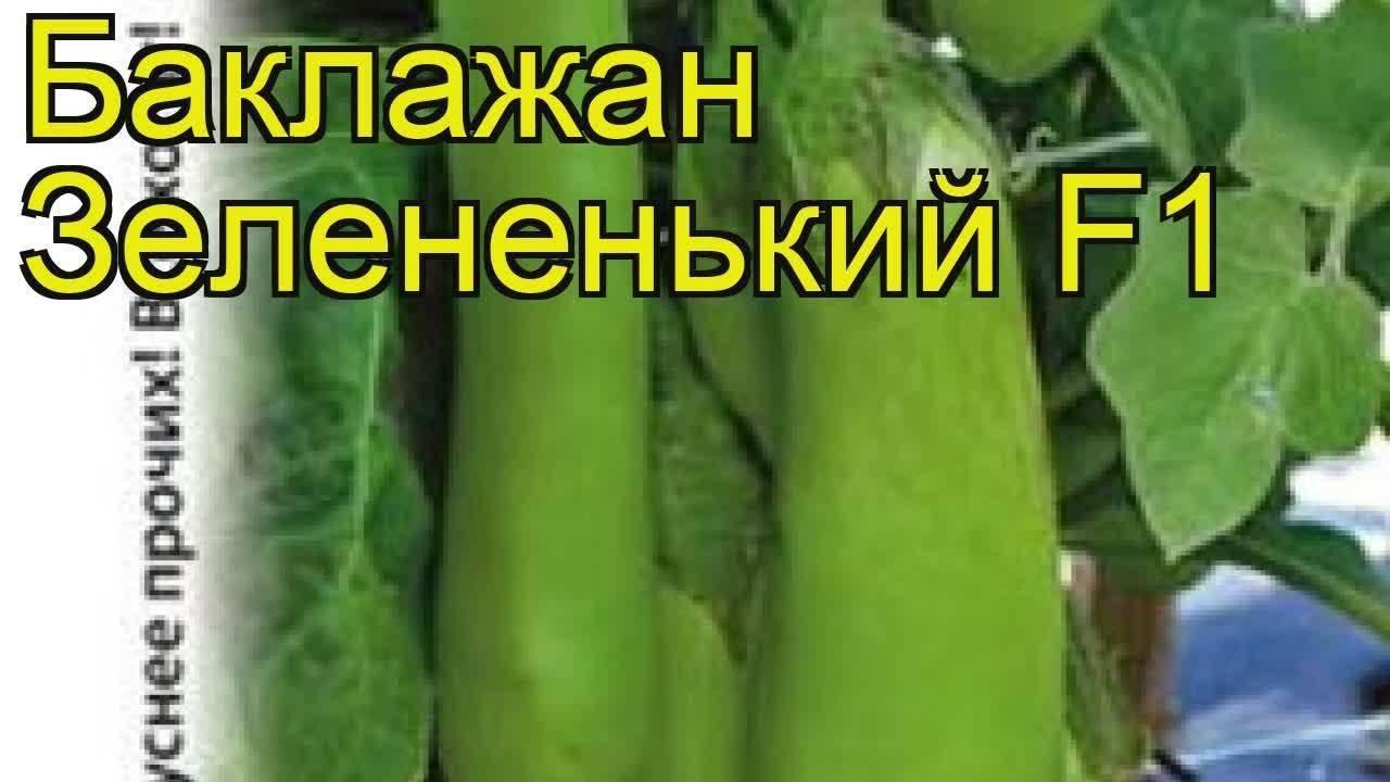 Баклажан Снежный: отзывы + фото