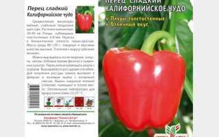 Перец «оранжевое чудо»: описание и выращивание