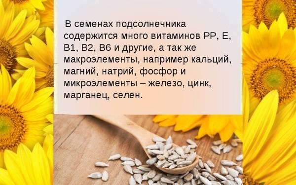Польза и вред разных видов семечек для кормящих мам