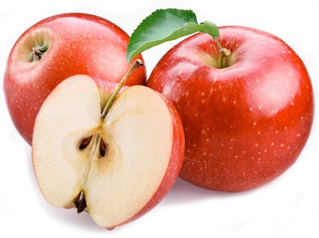 Сорт яблок чешской селекции «чемпион»: описание, фото, характеристика. тонкости выращивания яблок «чемпион»