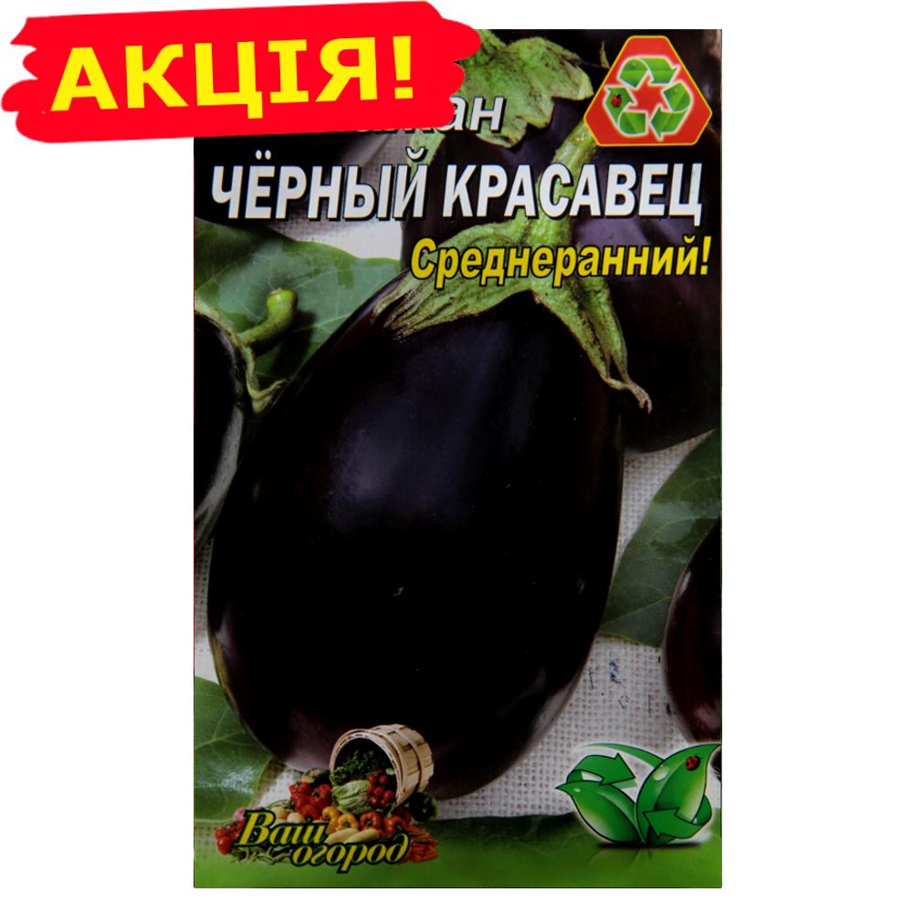 Баклажаны сорта черный красавец: описание, особенности выращивания и отзывы