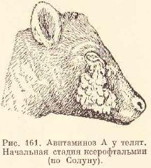 Авитаминозы у животных — agroxxi