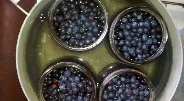 Как быстро перебрать бруснику от мусора: способы почистить ягоды