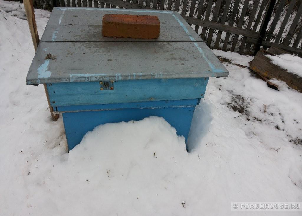 Зимовка пчел: как правильно утеплить ульи