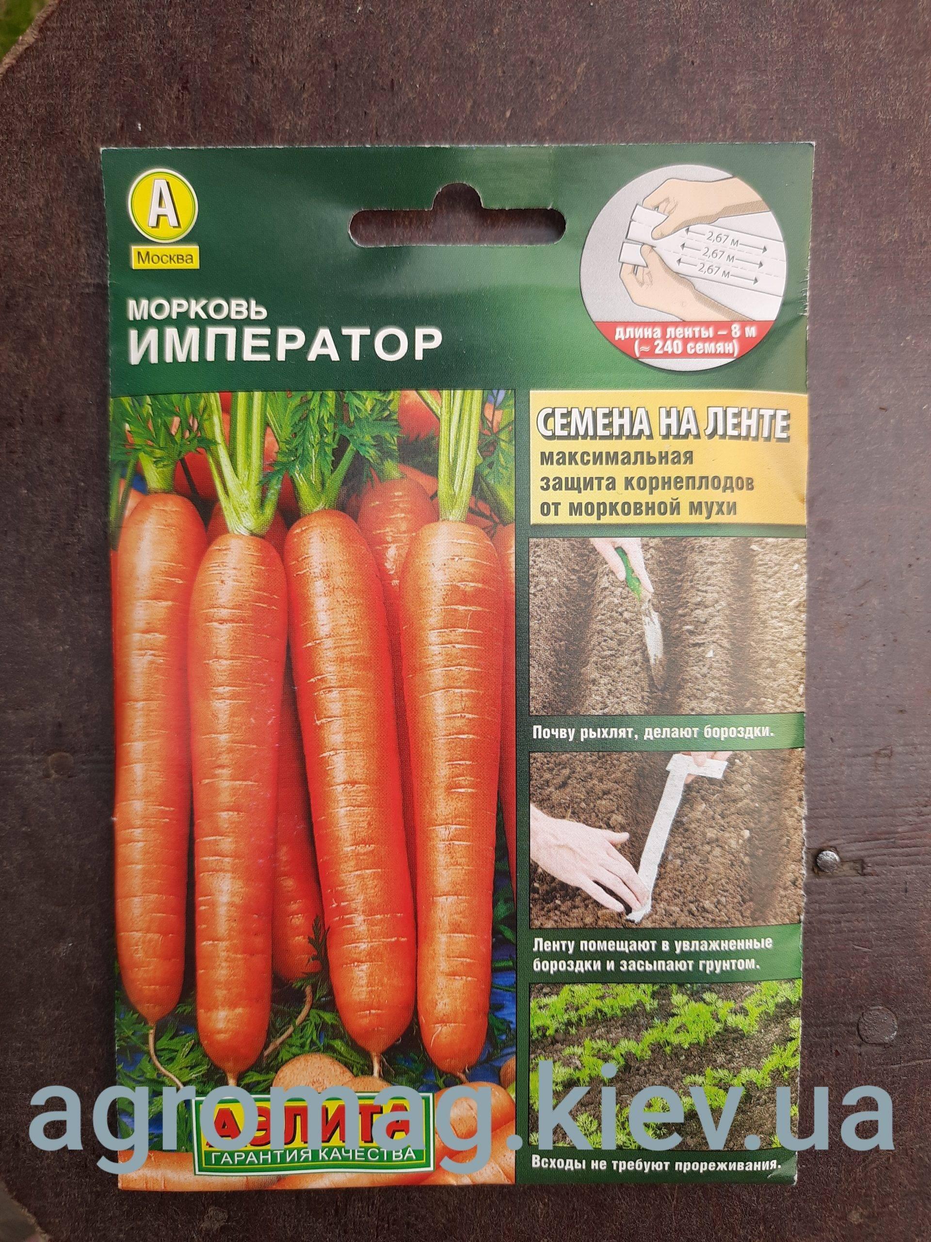 Морковь сорта император: характеристика и особенности выращивания