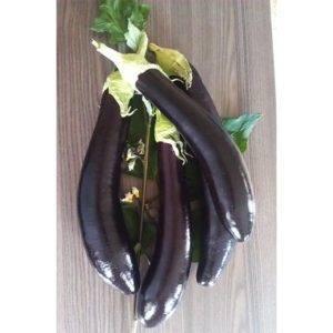 Сорт баклажана валентина (f1)