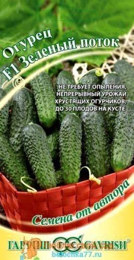 Раннеспелый гибрид огурцов «ленара f1»: фото, видео, описание, посадка, характеристика, урожайность, отзывы