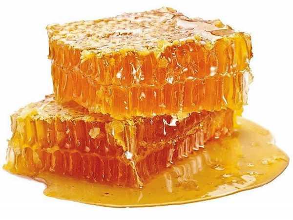 Кушаем соты с медом и воском