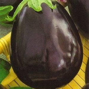 Баклажан щелкунчик: описание сорта, фото, отзывы