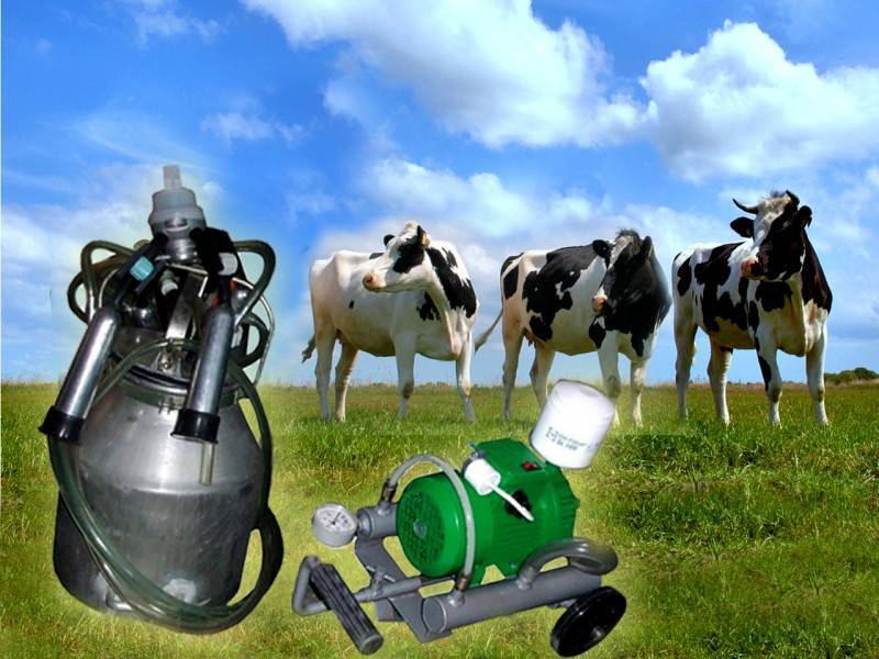 Доильный аппарат для коров – как правильно с ним работать?