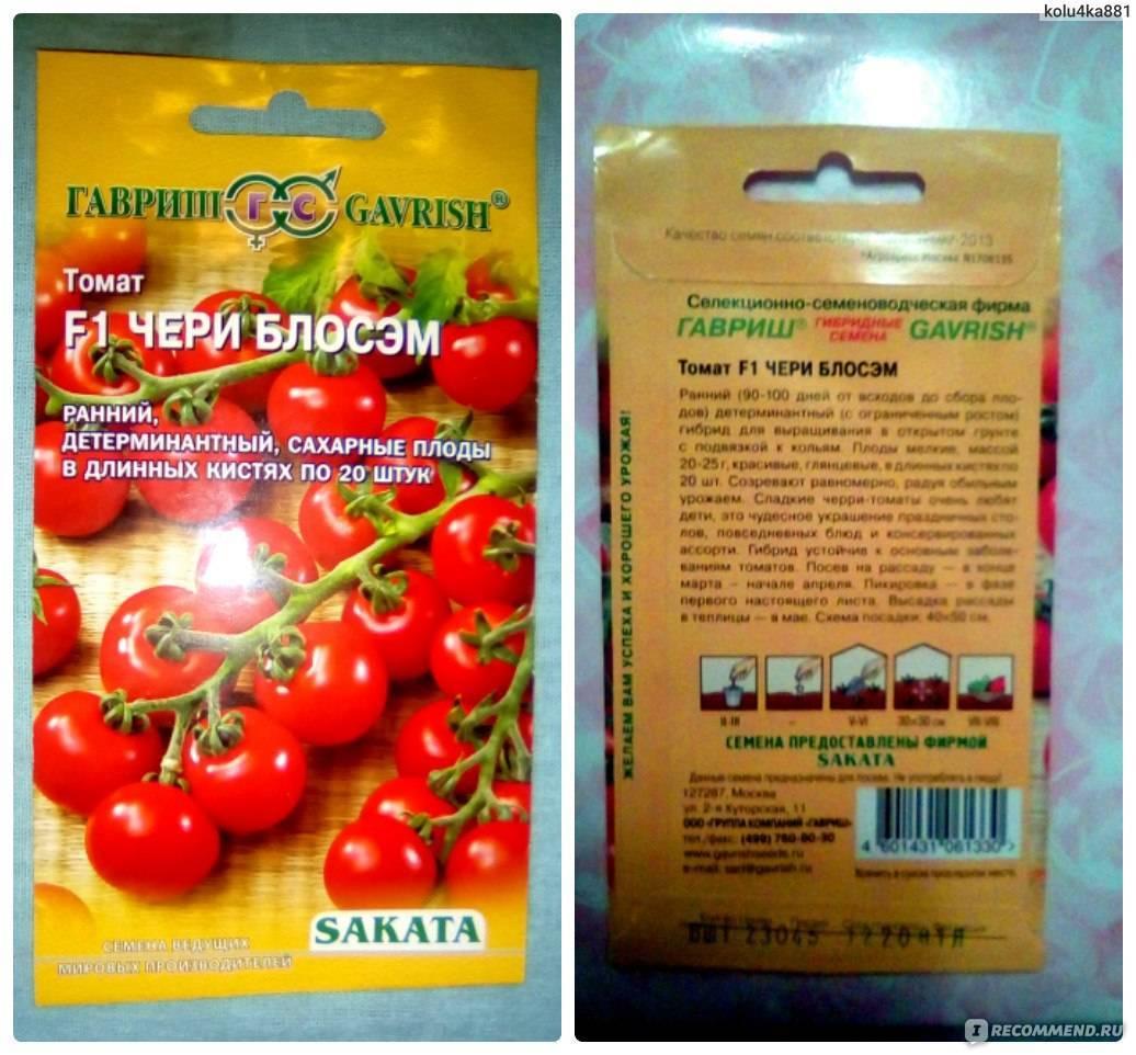Описание сорта томата черри красный, его характеристика и урожайность