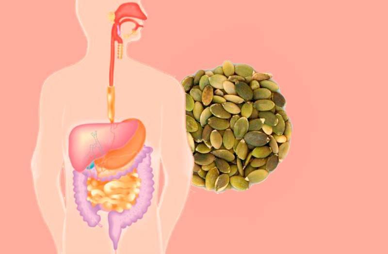 Тыквенные семечки польза и вред при диабете