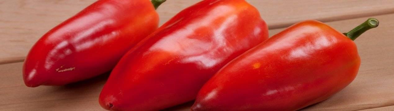 Сорт перца леся: фото, особенности, отзывы