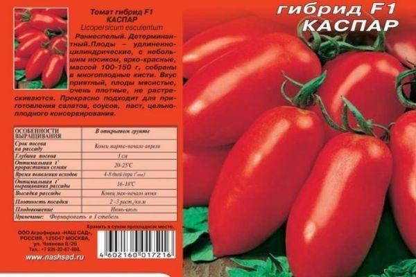 Томат каспар: описание сорта, способы повышения урожайности, рекомендации по выращиванию, защита от тли, отзывы