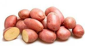 Сорт картофеля тайфун