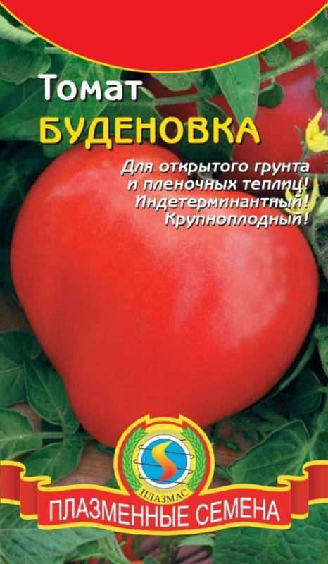 Томат буденовка: описание сорта, характеристика, выращивание