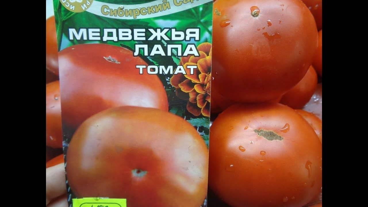 Биф томат нина: отзывы и фото тех, кто выращивает, описание сорта
