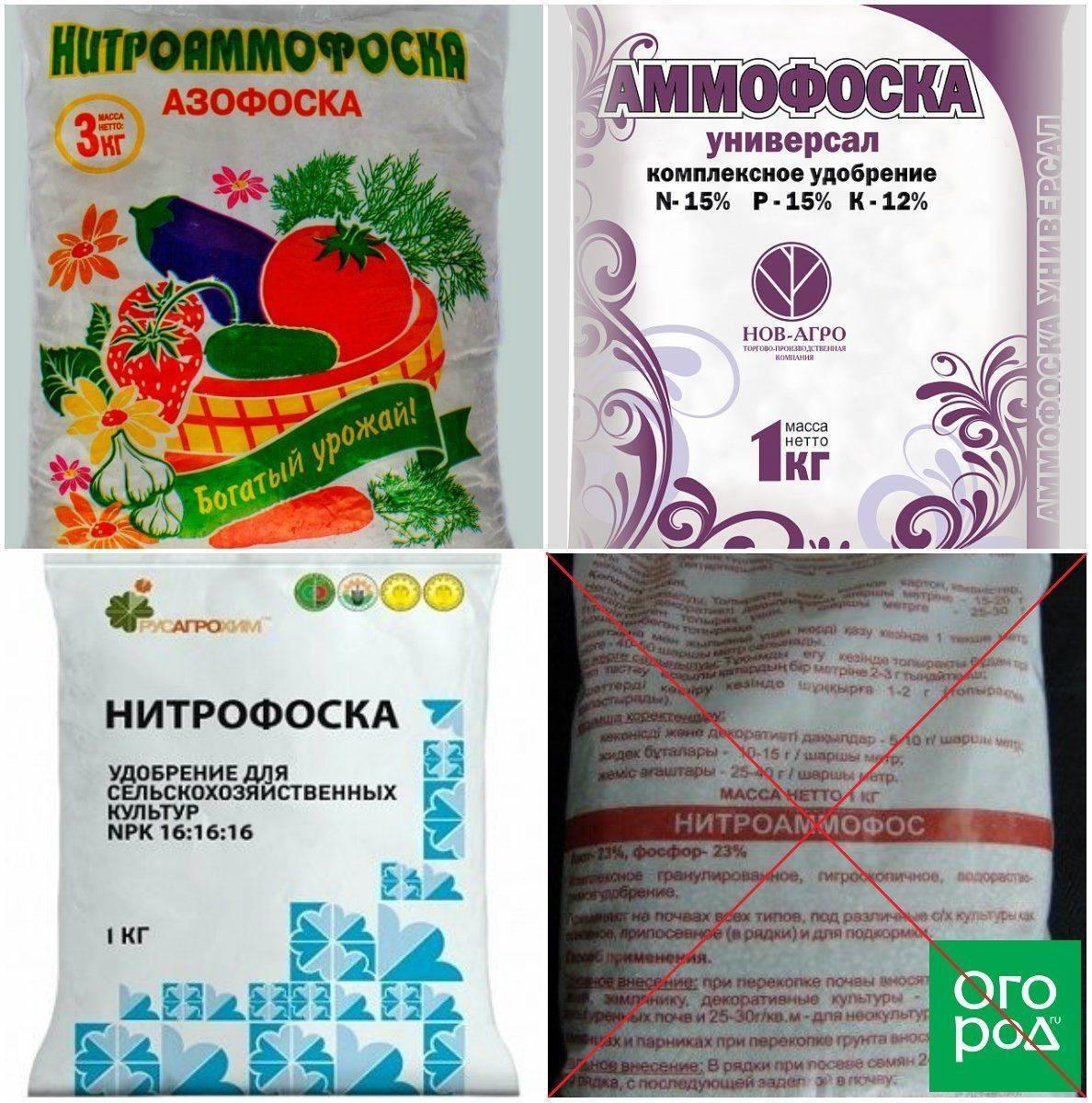 Нитроаммофоска удобрение: применение при выращивании культур