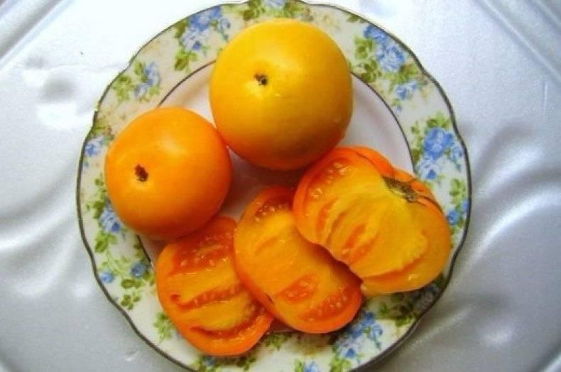 Томат апельсин. в чем особенности сорта