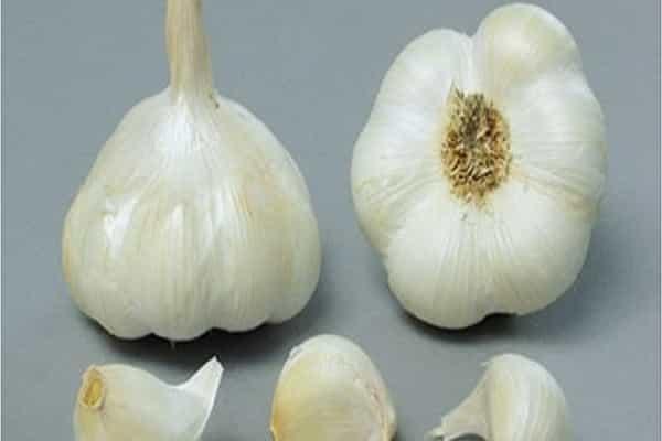 Почему чеснок сорта «петровский» ценится садоводами?