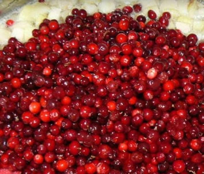 Ведро чистых ягод за минуты. как быстро перебрать бруснику от мусора очистка ягод от мусора пылесосом