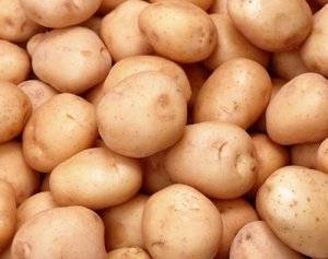 Сорт картофеля жуковский ранний: описание, посадка и уход