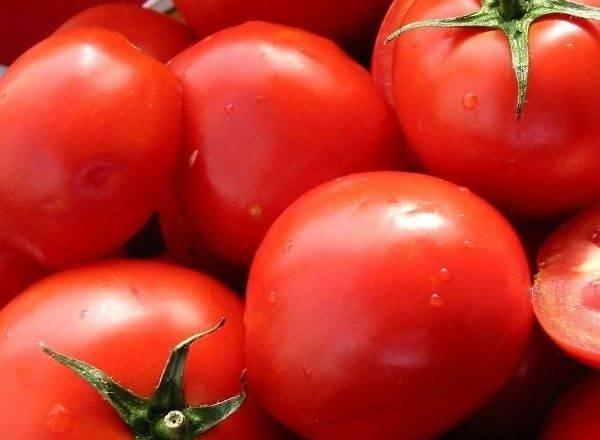 """Томат """"афродита f1"""": особенности, урожайность и описание сорта"""