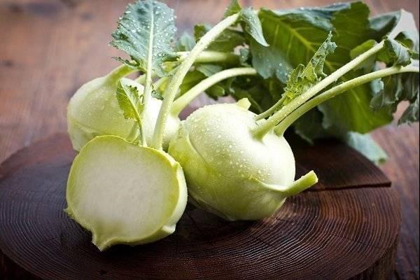 Как хранить капусту кольраби на зиму и когда её нужно убирать? хранение кольраби в свежем виде в погребе и домашних условиях