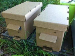 Полезные приспособления для пчеловодства своими руками