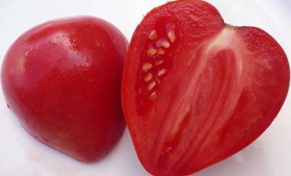 Вкусные и ароматные помидоры, похожие на гигантские ягоды — удивительный томат «немецкая красная клубника»