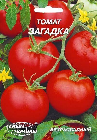 Томат «загадка»: описание сорта, особенности посева, ухода и выращивания