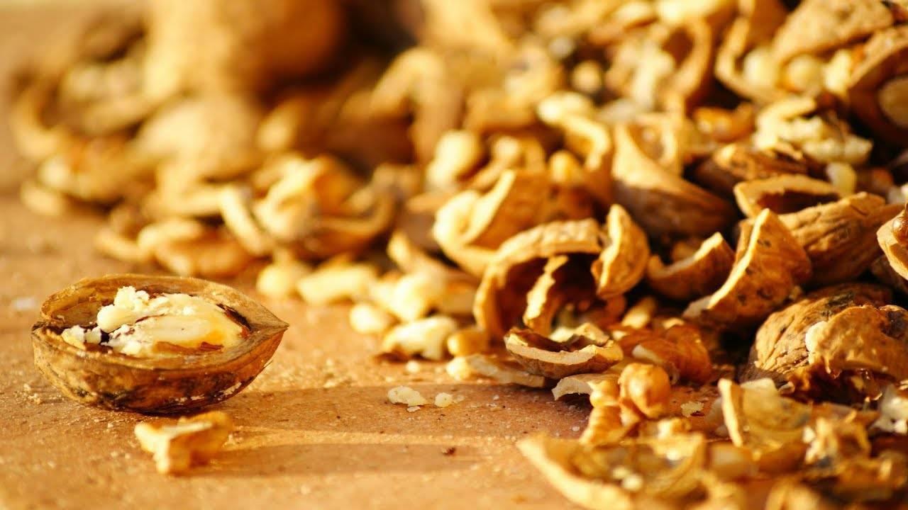 Скорлупа кедрового ореха: ее польза и использование в лечебных целях