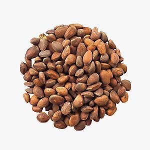 Скорлупа кедрового ореха: лечебные свойства и противопоказания, применение в народной медицине