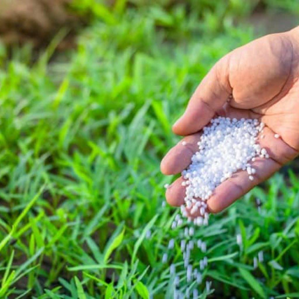 Применение удобрения — сульфат калия