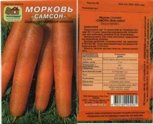 Морковь нандрин: описание и характеристика сорта, основные особенности, преимущества, недостатки, правила выращивания и урожайность