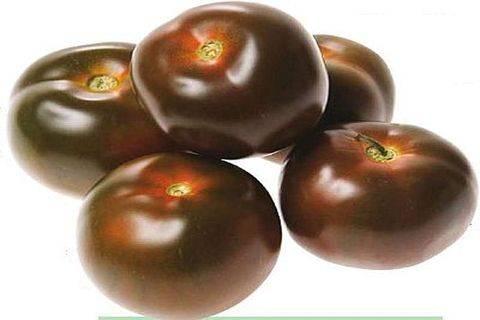 Черноплодный гость «кумато» – особенный среди томатов