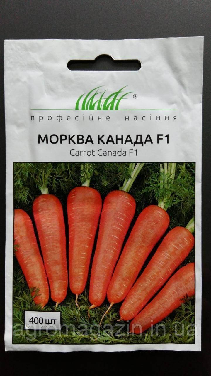 Морковь нандрин