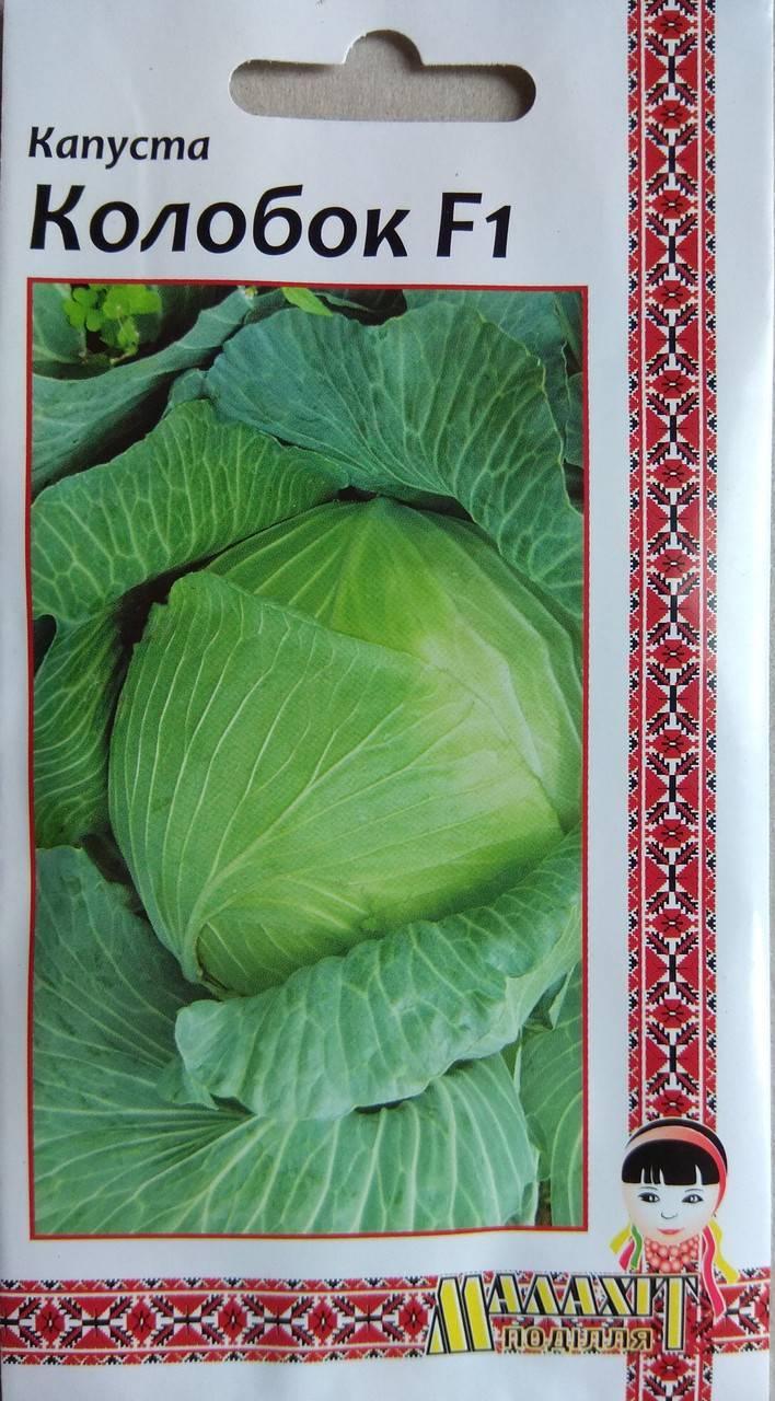 Сорт капусты колобок f1