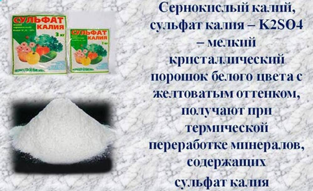 Сульфат калия (сернокислый калий) как удобрение: применение, подкормка
