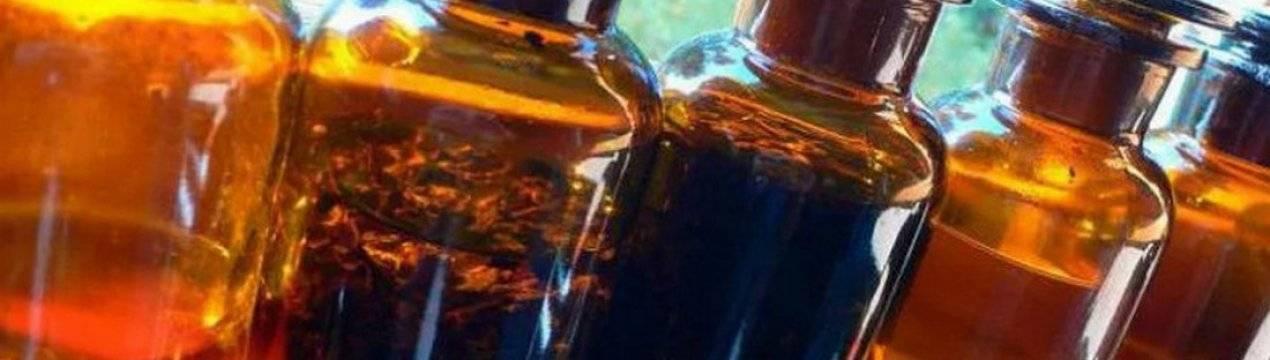 Лечение гайморита прополисом – готовым лекарственным пчелиным клеем самой природы