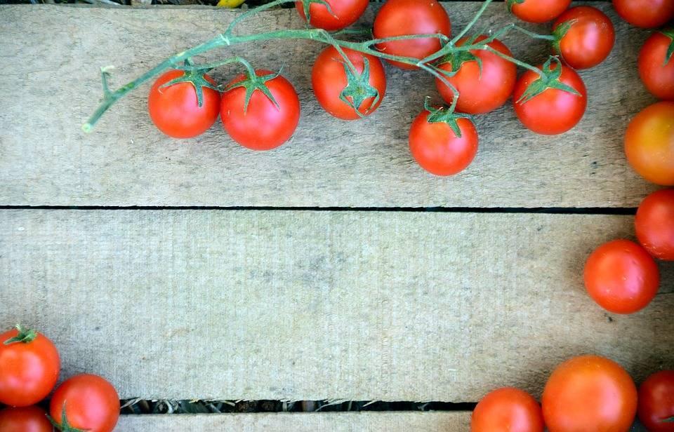 Особенности внесения подкормок для помидоров