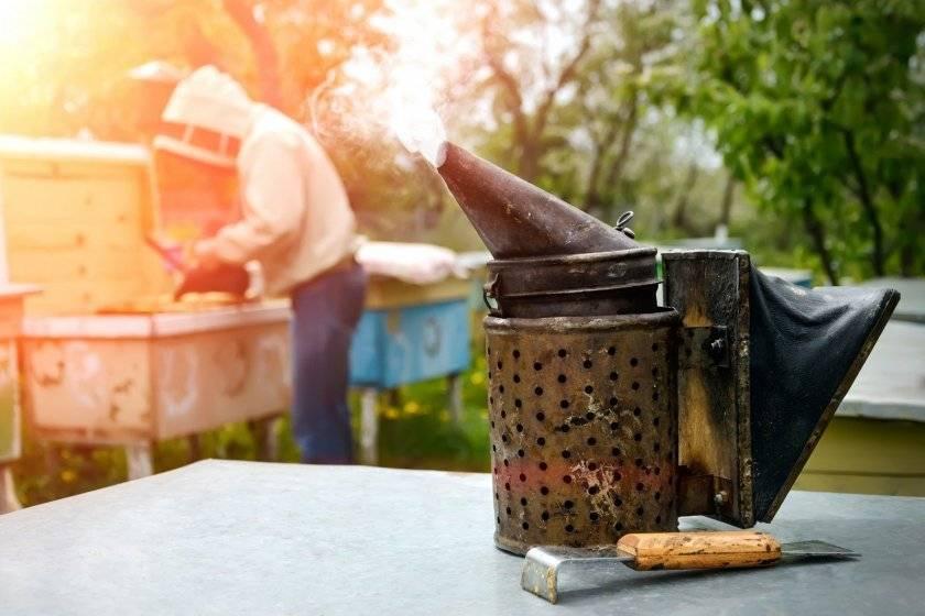 Дымарь для пчел своими руками, как разжечь, правила использования