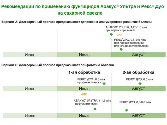 Фунгицид ракурс: инструкция по применению, механизм действия, нормы расхода