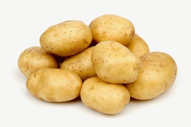 Голландские сорта картофеля