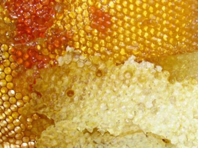 Польза продуктов пчеловодства для человека